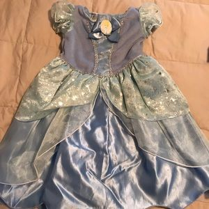 Other - 12 Month Cinderella Costume
